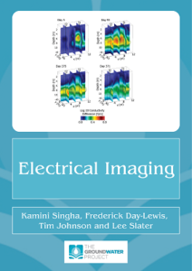 Book Cover for Electrical Imaging